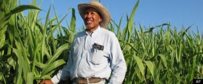 African American Farmers of California