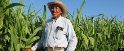 African American Farmers of California