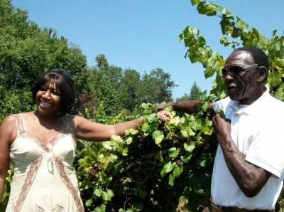 White-owned farms outnumber black-owned farms in Orange County